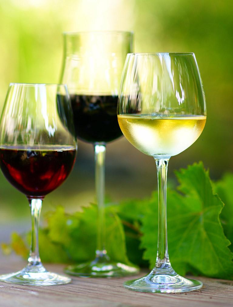 Verschiedene Weine im Tagungszentrum Blaubeuren